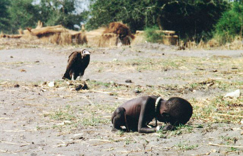 Vulture Waiting for Hungry Child To Die For Healthy Flight hunger,vulture,suicide,famine,animal,photography,Kevin Carter,Pulitzer Prize,poverty